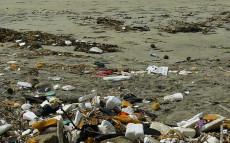 India Kochin – Why we boycott plastic